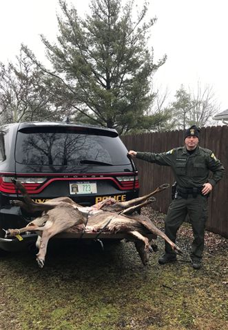 ECO Mark Colesante with the illegally taken deer seized in the Town of Ira