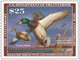 2018-2019 Federal Duck Stamp featuring a painting of mallards