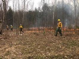 Forest Rangers in a wooded area conducting and monitoring a prescribed fire